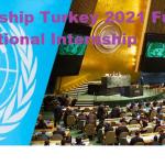 UNDP Internship Turkey 2021 Fully Funded Paid International Internship – Apply Now