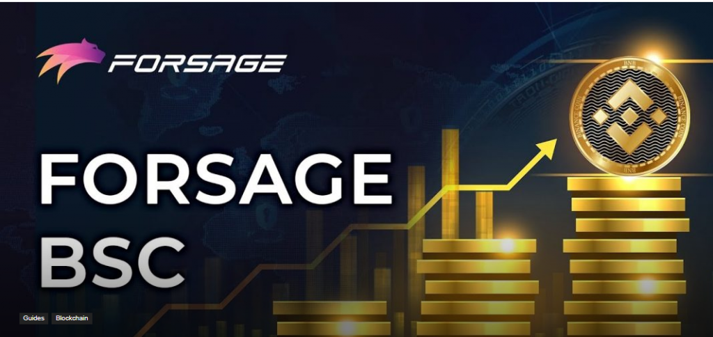 FORSAGE BUSD REVIEW